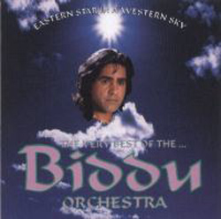 An Eastern Star In A Western Sky - The Very Best Of The Biddu Orchestra