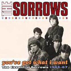 You've Got What I Want – The Essential Sorrows 1965-67
