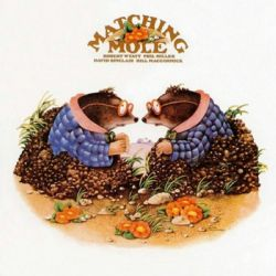 Matching Mole: Remastered Limited Edition 180g Vinyl