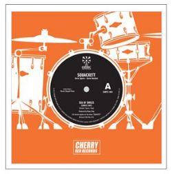 Sea of Smiles LTD EDITION 7-INCH VINYL SINGLE / Record Store Day 2012