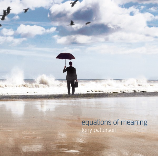 TONY PATTERSON equations of meaning