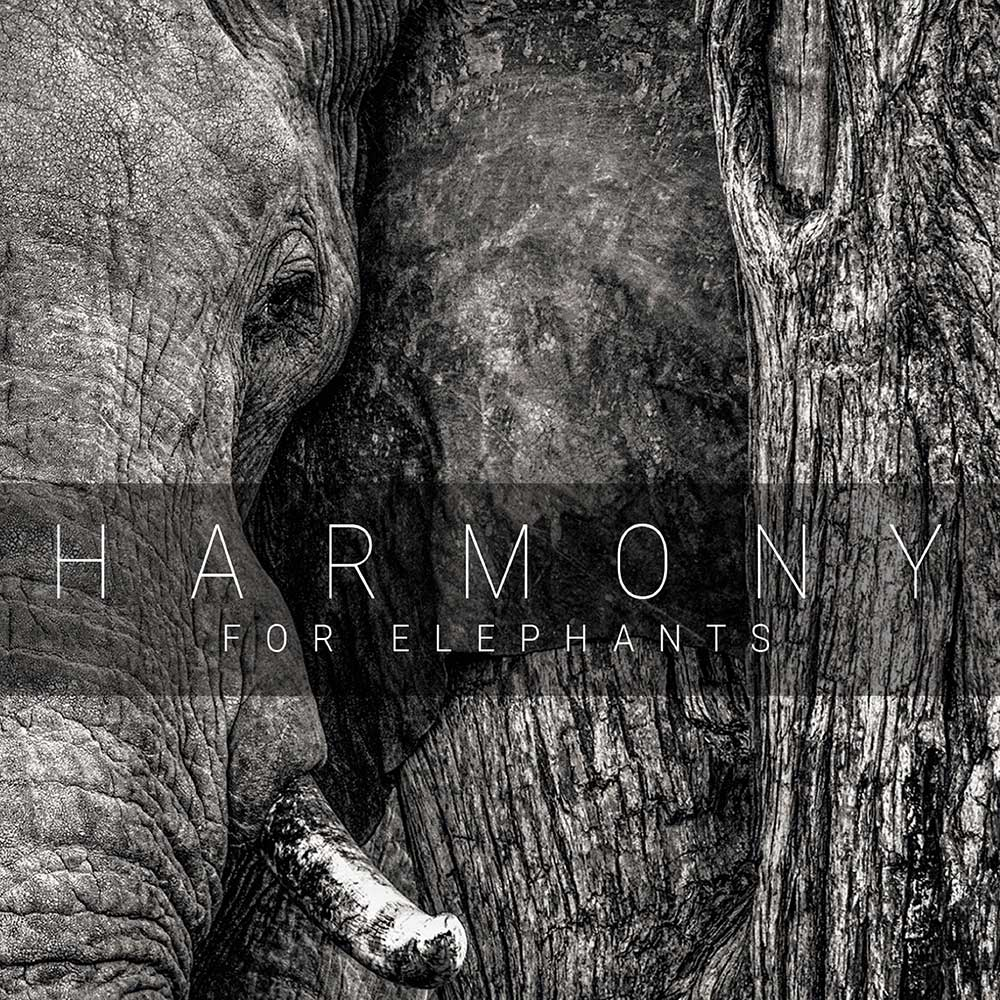 Harmony For Elephants: Various Artists, A Charity Album